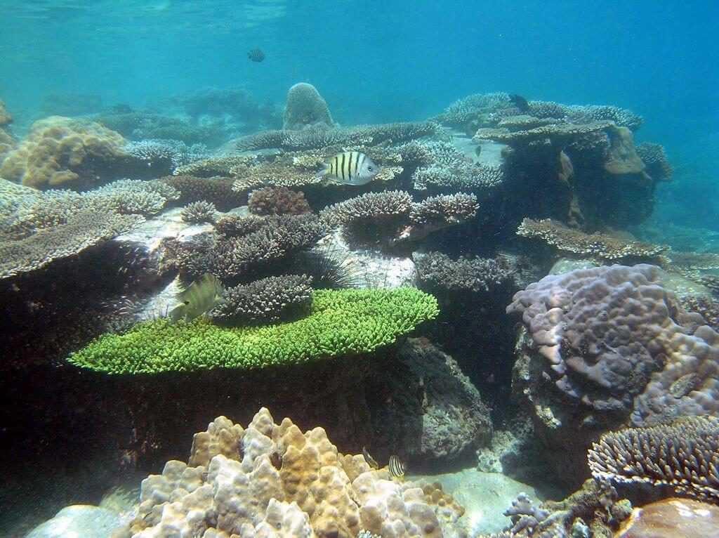 ostrova na fukuoke 11 1024x766 - Вьетнам планирует открыть Фукуок для иностранных туристов