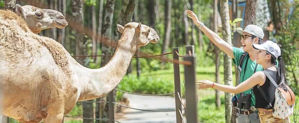 Зоопарк сафари парк Фукуок