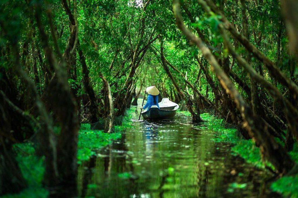 лес часу анзянг