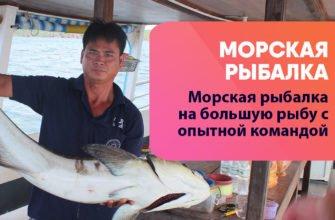 rybalka phu quoc 335x220 - Рыбалка на большую рыбу