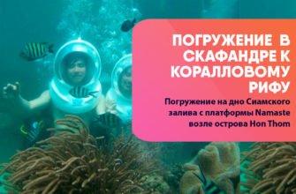 Погружение в скафандре к коралловому рифу на фукуоке